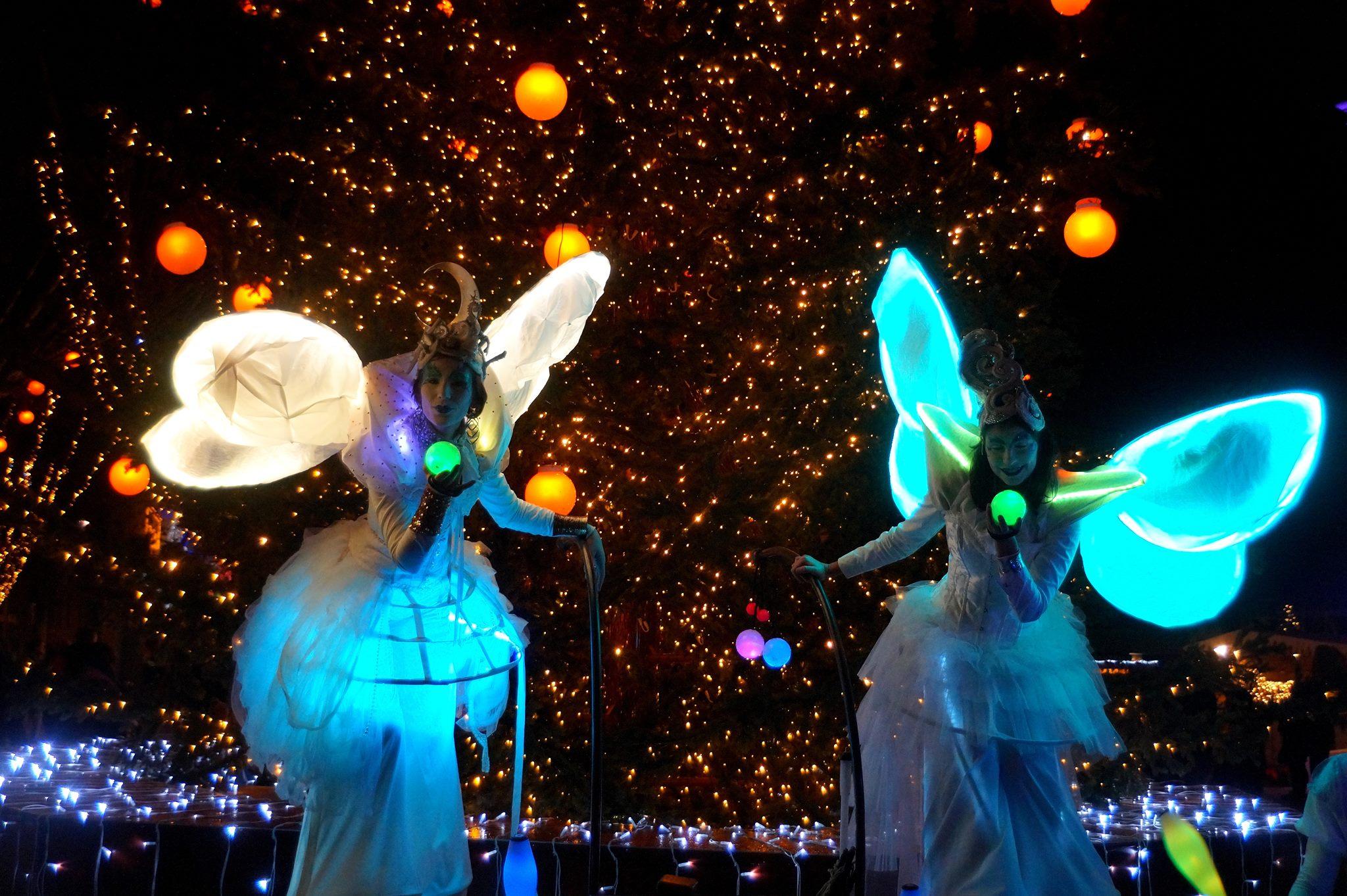 """Échassier blanc lumineux """"Parade de lune"""""""