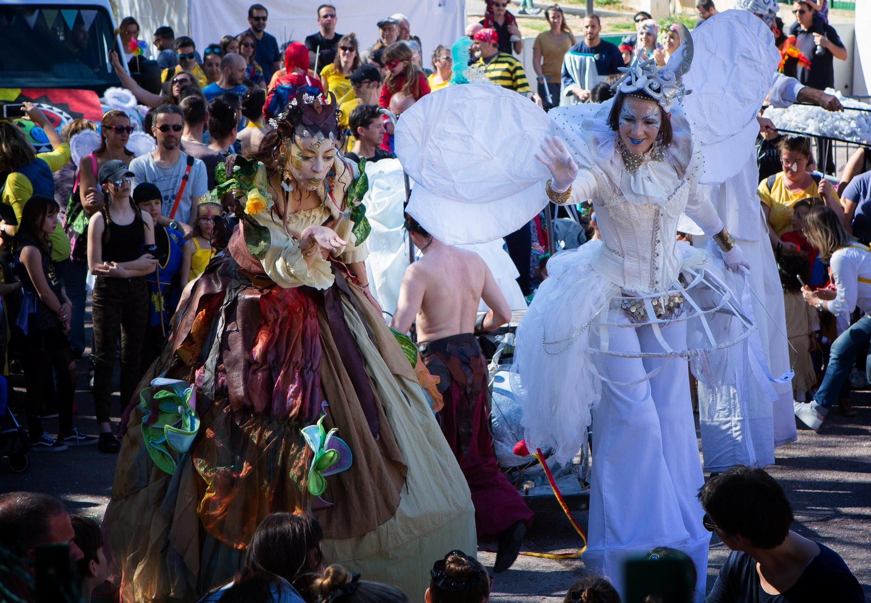 Parade-carnaval-quatre-elements-echassier-nature-PACA