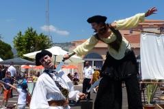 Echassier pirates