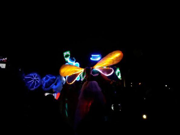 échassiers lumineux martigues 13