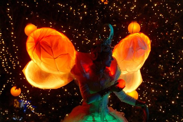échassier blanc lumineux cirque indigo