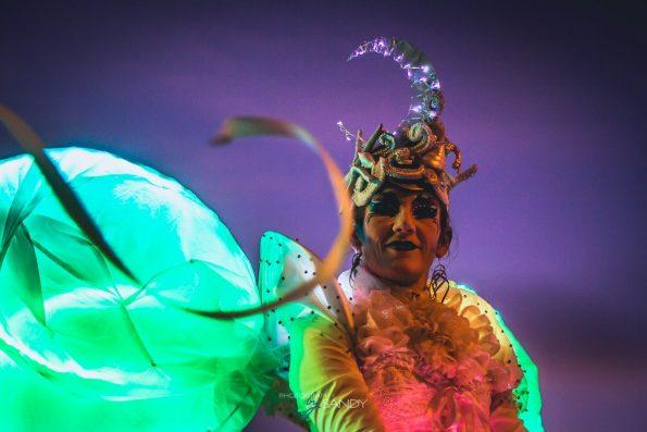 accueil des échassiers blanc lumineux de Cirque Indigo en PACA