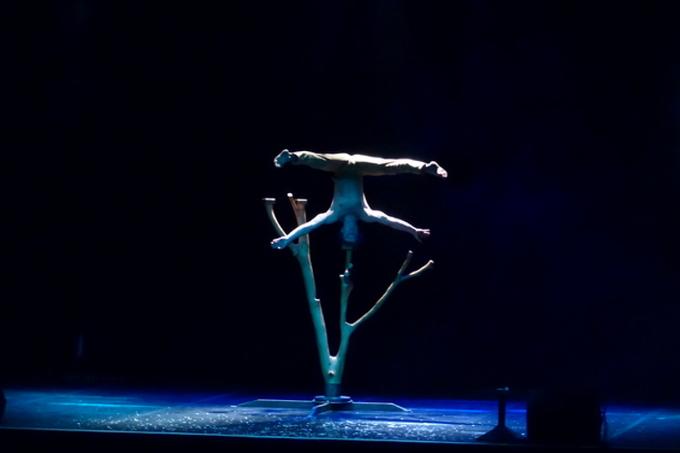 spectacle de acrobatie et cirque pour arbre de noel caraveo